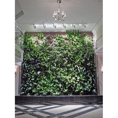Lobby Green Wall_2
