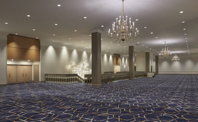 Delta Hotels by Marriott Toronto Airport & Conference Centre, DE